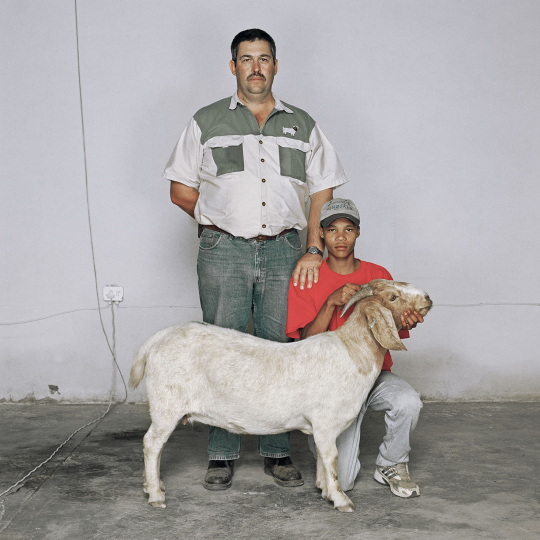Jan Frederick van Schalkwuyk (standing) and Abraham Louw with the second-placed goat. Carnarvon, South Africa, March 2008.
