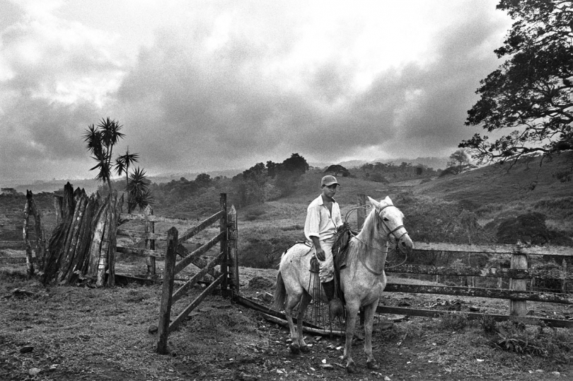 A farmhand at the Hacienda coffee farm in the Jinotega region of Nicaragua. 2003.